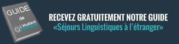 Bannière-publicitaire-(séjours-linguistiques)