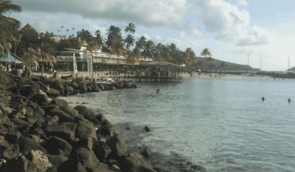 études aux Antilles