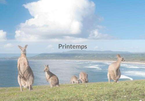 stage en Australie, Voyage en Australie : un climat propice à l'année