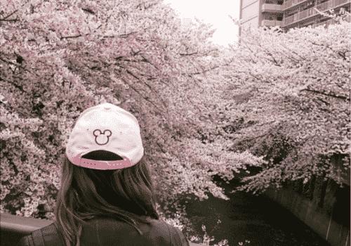 Japon, Le témoignage de Claire, expatriée au Japon pendant 10 mois