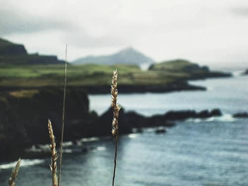 séjour linguistique, L'expérience d'Anna en séjour linguistique en Irlande
