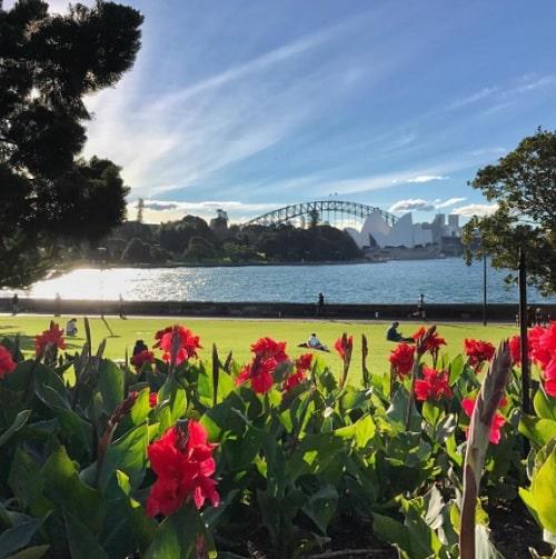 études à Sydney, L'expérience d'Hippolyte en semestre d'études à Sydney